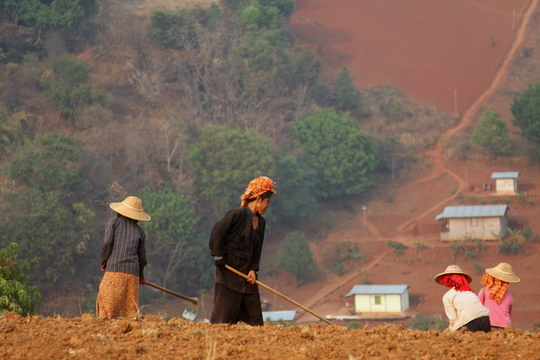 Myanmar: Tilling the Fields