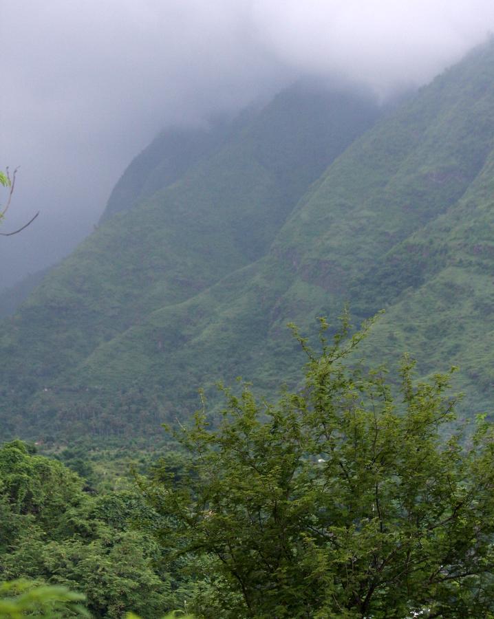 Bali: Lush valley near Amed