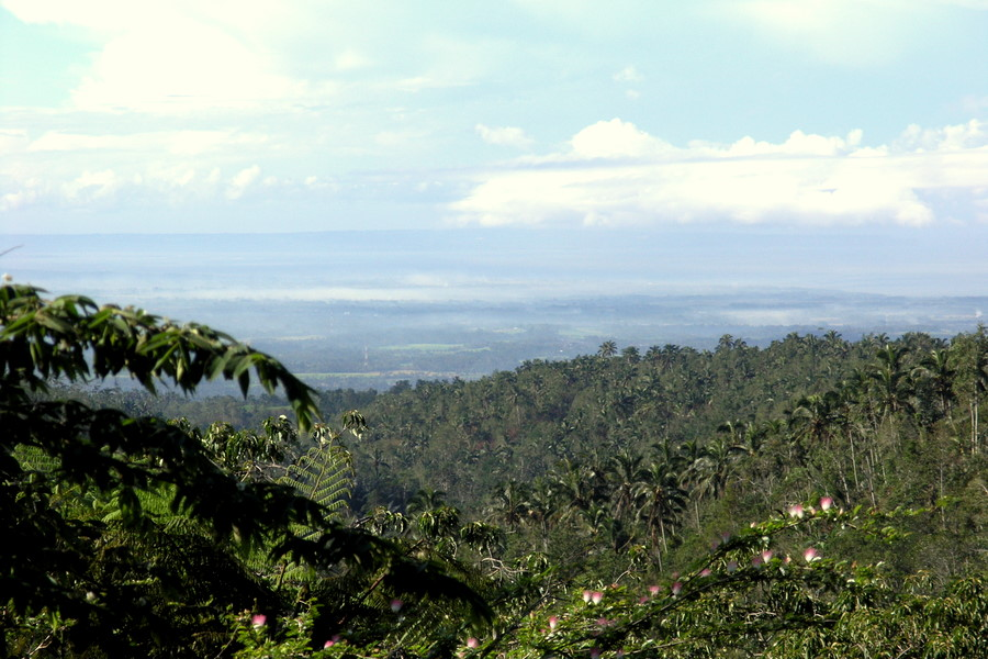 Bali: View of South Bali from near Mt Batukaru