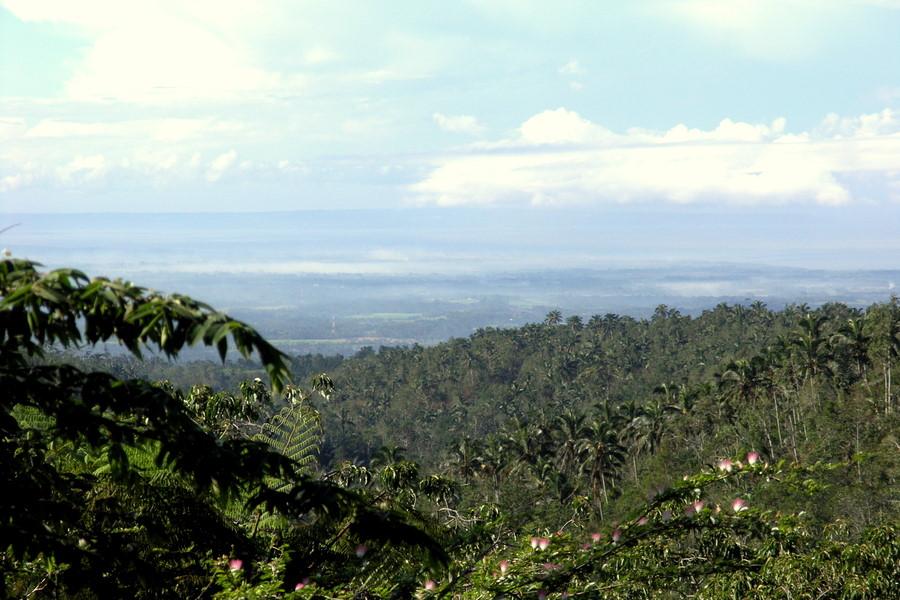 Bali: View of South Bali from near Mt Batukaru