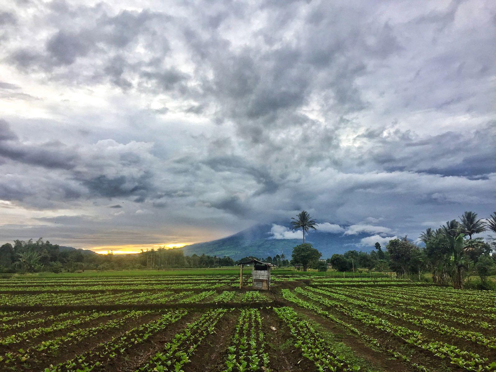 Pagar Alam Gunung Dempo