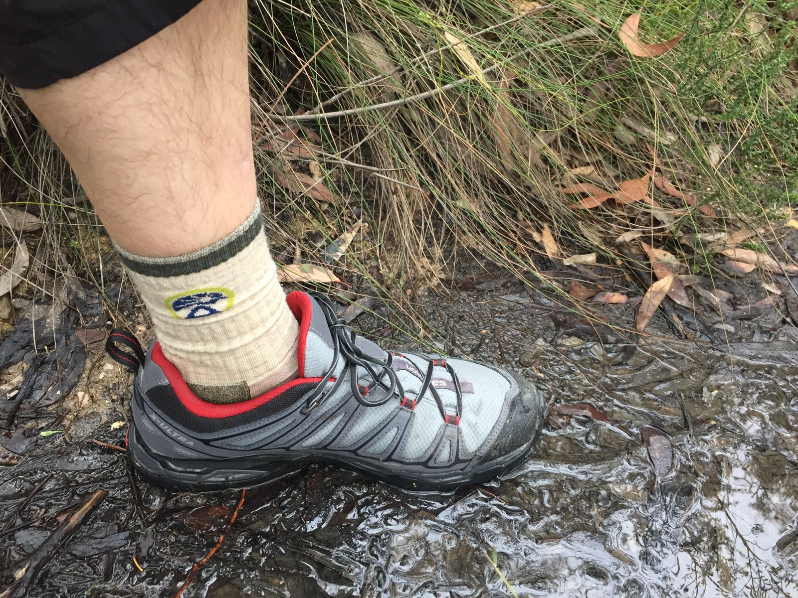 Socks For Camino Darn Tough