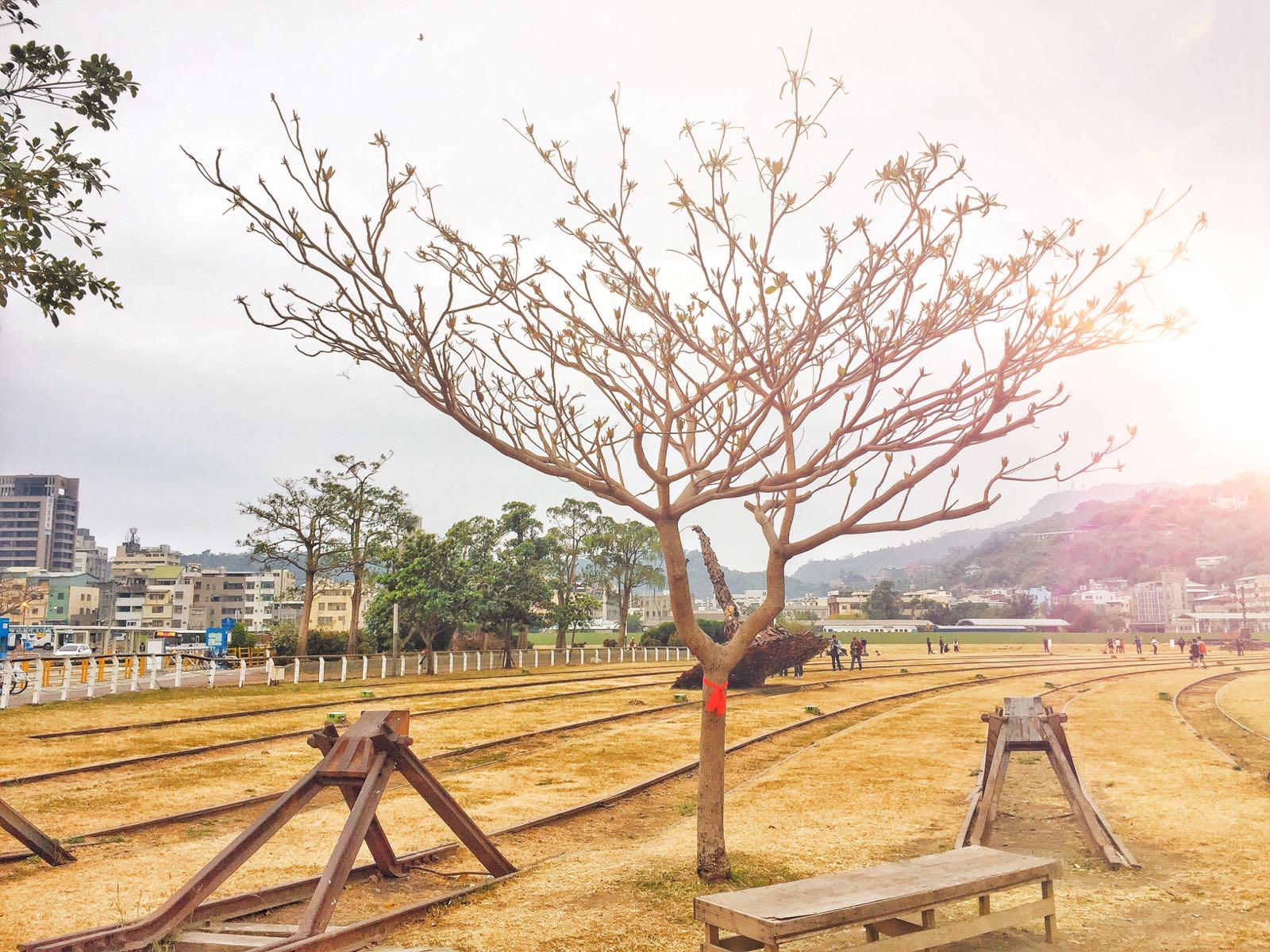 Kaohsiung Railway Cultural Park