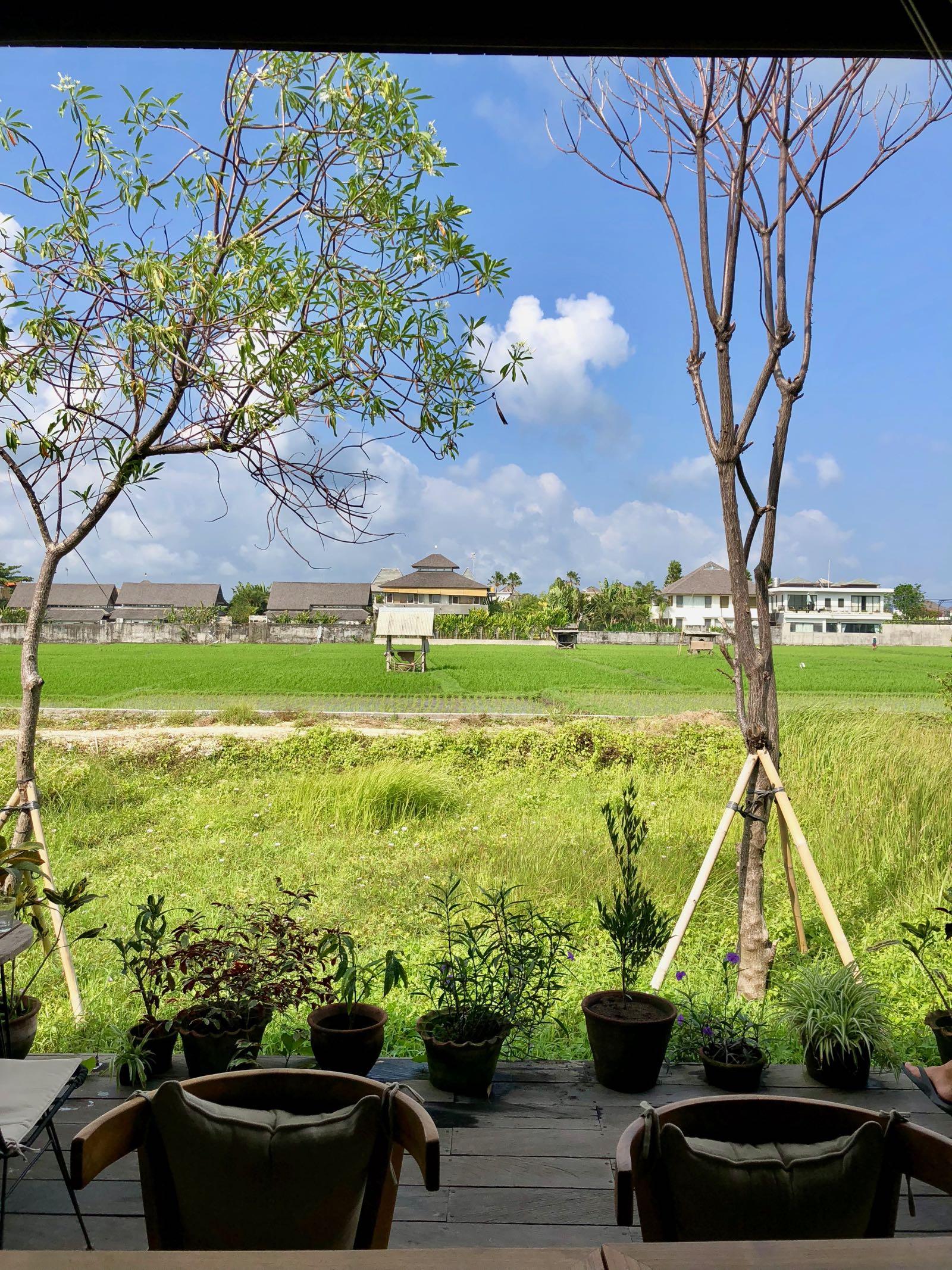 Cinta Cafe Canggu Ricefield