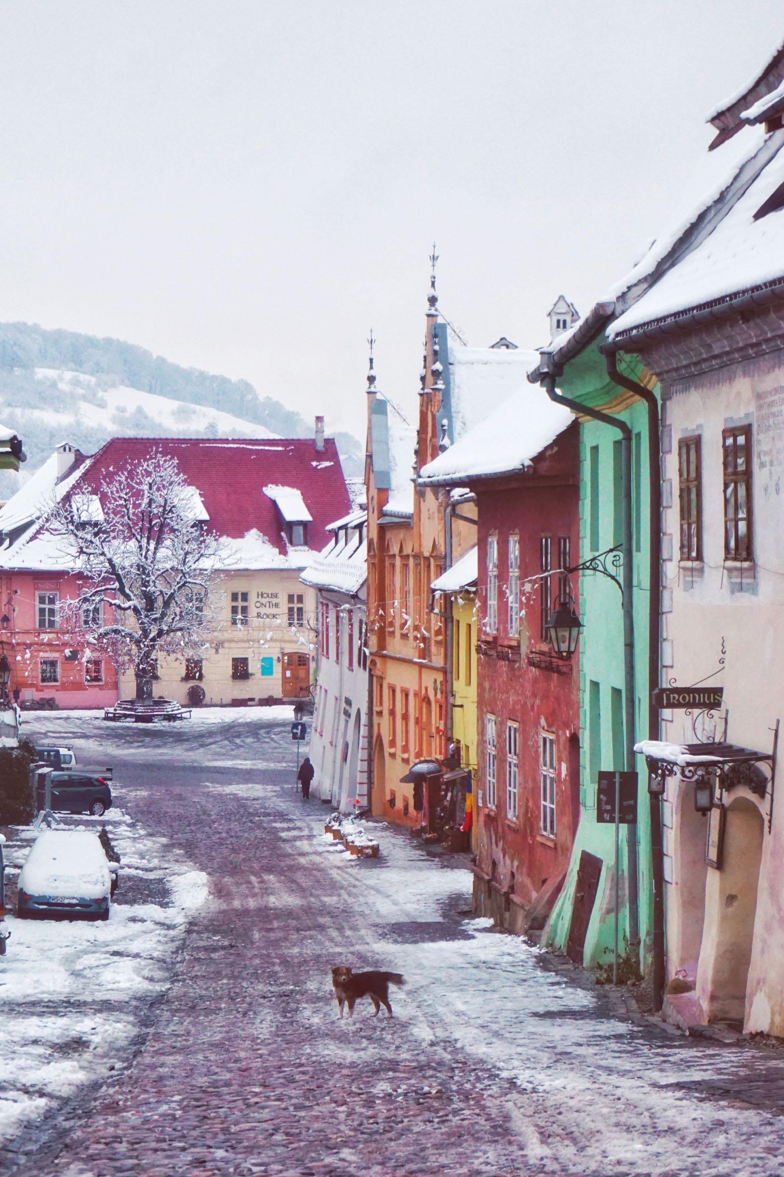 Icy Cobblestone Road In Balkans