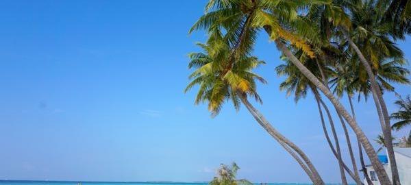 Maafushi beach is simply glorious.