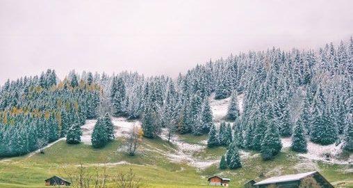 Scenery In Liechtenstein During Day Trip